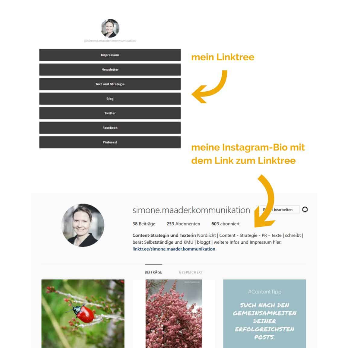 Instagram Linktree Bio Content Seeding
